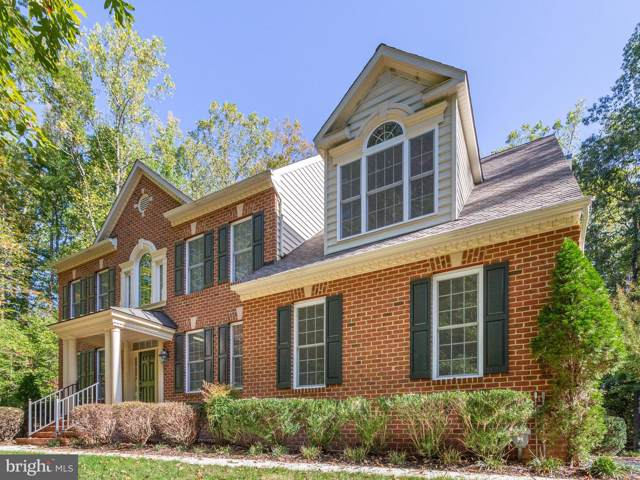601 Indian Point Court, DAVIDSONVILLE, MD 21035 (#MDAA416396) :: Bob Lucido Team of Keller Williams Integrity