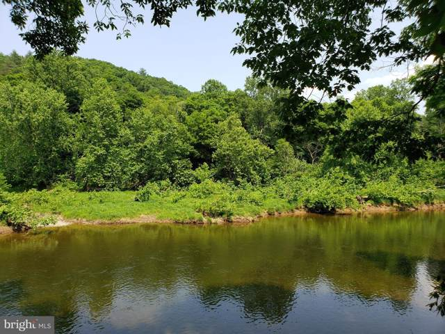 River Bend Drive, BLOOMERY, WV 26817 (#WVHS113368) :: The Daniel Register Group