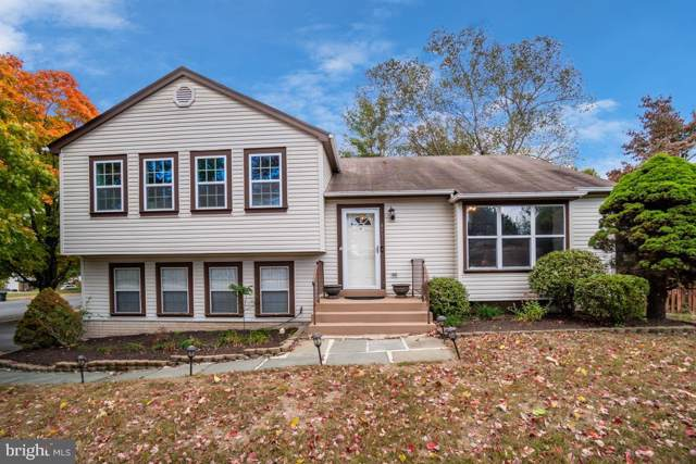 4401 Pleasant Valley Road, CHANTILLY, VA 20151 (#VAFX1095320) :: Network Realty Group