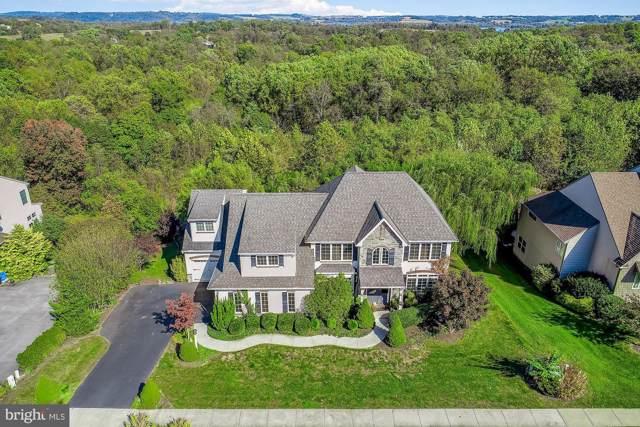 115 Livia Lane, WRIGHTSVILLE, PA 17368 (#PAYK127082) :: The Joy Daniels Real Estate Group