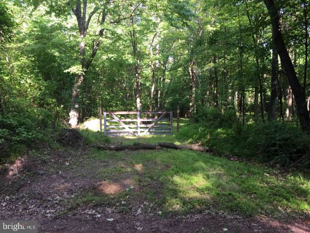 Jermikey, GERRARDSTOWN, WV 25420 (#WVBE172222) :: Pearson Smith Realty