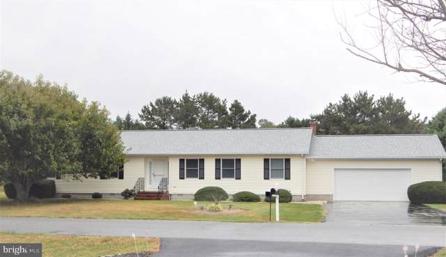 31032 Elm Drive, LEWES, DE 19958 (#DESU150054) :: RE/MAX Coast and Country