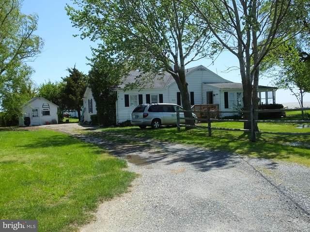 1210 Horse Point Road, FISHING CREEK, MD 21634 (#MDDO124438) :: Brandon Brittingham's Team