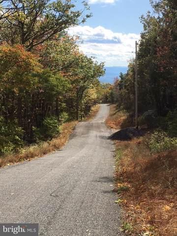 Archwood Trail, GORE, VA 22637 (#VAFV153822) :: Kathy Stone Team of Keller Williams Legacy