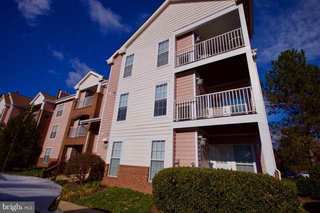 20979 Timber Ridge Terrace #203, ASHBURN, VA 20147 (#VALO397218) :: Arlington Realty, Inc.
