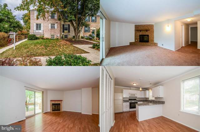 9728 Early Spring Way, COLUMBIA, MD 21046 (#MDHW271738) :: Mortensen Team
