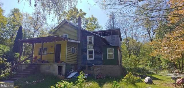 65 Upper Excelsior Road, EXCELSIOR, PA 17866 (#PANU101006) :: The Joy Daniels Real Estate Group