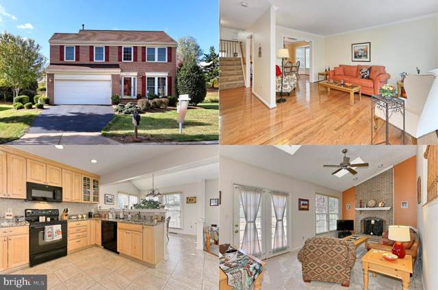 20753 Dewberry Court, ASHBURN, VA 20147 (#VALO397264) :: The Miller Team