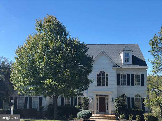 17147 Needles Court, LEESBURG, VA 20176 (#VALO397298) :: Keller Williams Pat Hiban Real Estate Group