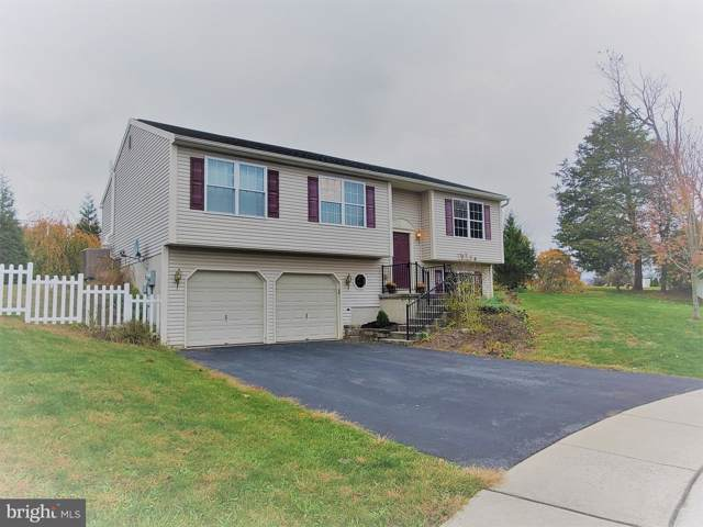3 Lowland Cove, PINE GROVE, PA 17963 (#PASK128364) :: The Joy Daniels Real Estate Group