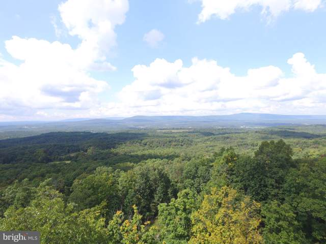 Lot 70 Driftwood Drive, GERRARDSTOWN, WV 25420 (#WVBE172294) :: Pearson Smith Realty