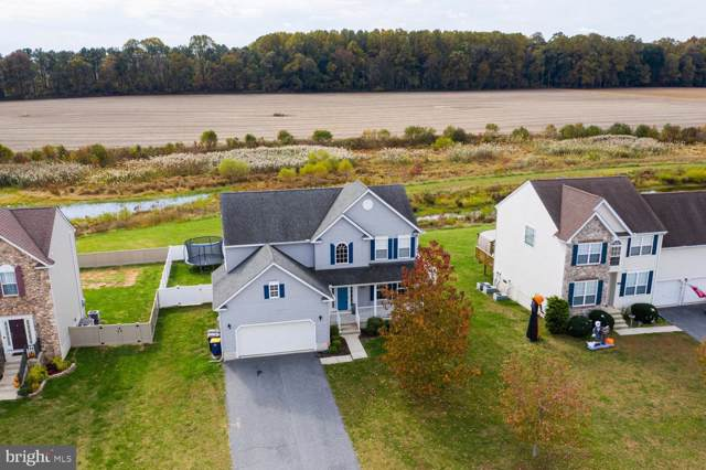 404 Belfry Drive, FELTON, DE 19943 (#DEKT233384) :: The Allison Stine Team