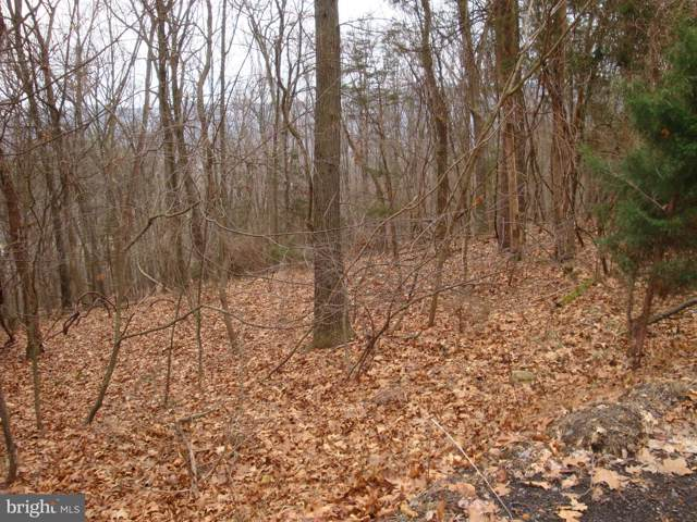 Lot 5 Anderson Ridge Road, WARDENSVILLE, WV 26851 (#WVHD105584) :: Radiant Home Group