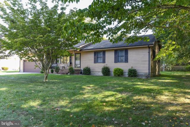 44 Comanche Circle, MILLSBORO, DE 19966 (#DESU150522) :: RE/MAX Coast and Country