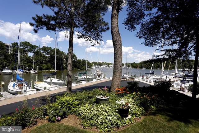 ANNAPOLIS, MD 21403 :: Viva the Life Properties