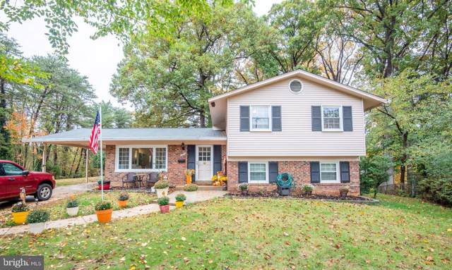 5935 Jennings Lane, SPRINGFIELD, VA 22150 (#VAFX1097142) :: Pearson Smith Realty