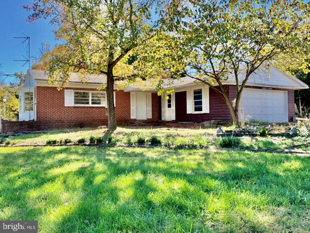 664 Wrights Mill Road, BERRYVILLE, VA 22611 (#VACL110906) :: Radiant Home Group