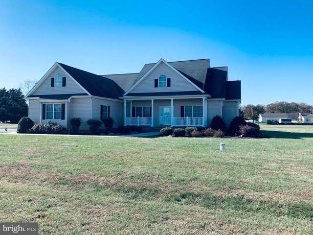 110 W Lucky Estates Drive, HARRINGTON, DE 19952 (#DEKT233636) :: Brandon Brittingham's Team