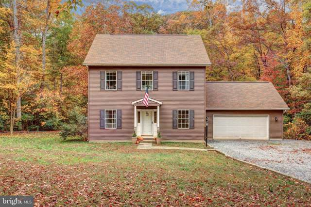 22 Hunt Haven, MINERAL, VA 23117 (#VALA120114) :: Great Falls Great Homes