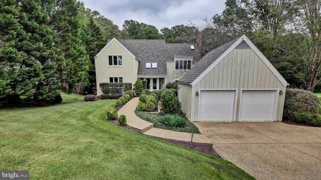 9119 White Chimney Lane, GREAT FALLS, VA 22066 (#VAFX1097622) :: Great Falls Great Homes