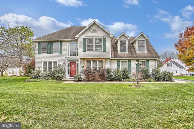 205 Alanthia Lane, ETTERS, PA 17319 (#PAYK127930) :: Iron Valley Real Estate