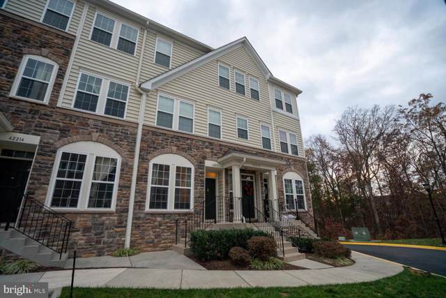 42216 Water Iris Terrace Terrace, ALDIE, VA 20105 (#VALO398060) :: Homes to Heart Group