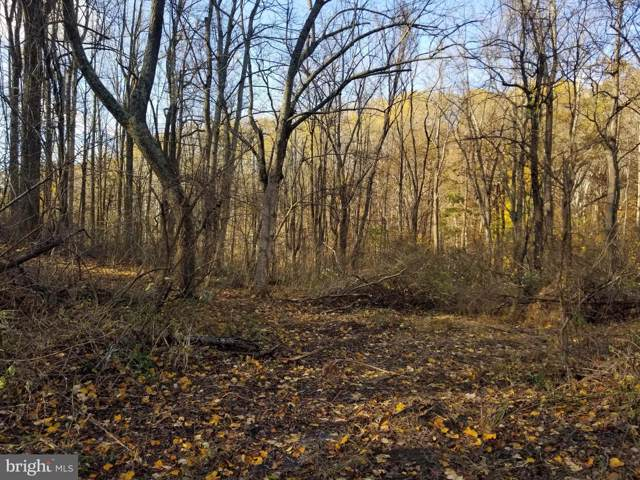 Lot 3A Hardscrabble Road, LINDEN, VA 22642 (#VAFQ162982) :: Advon Group