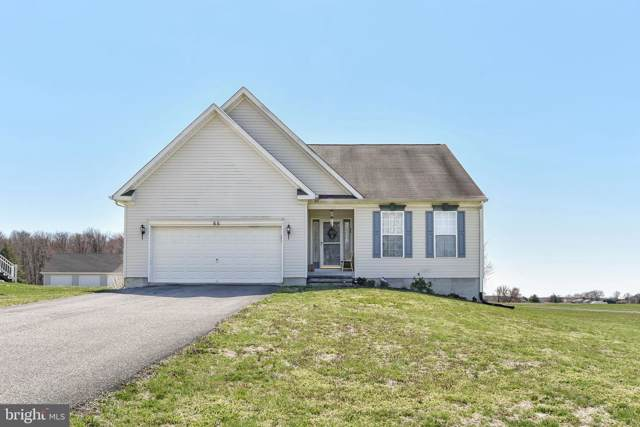 66 South Drive, EARLEVILLE, MD 21919 (#MDCC166846) :: AJ Team Realty