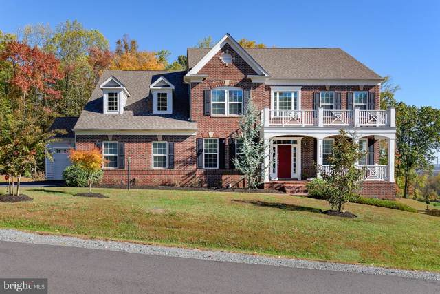 41680 Wakehurst Place, LEESBURG, VA 20176 (#VALO398154) :: Great Falls Great Homes