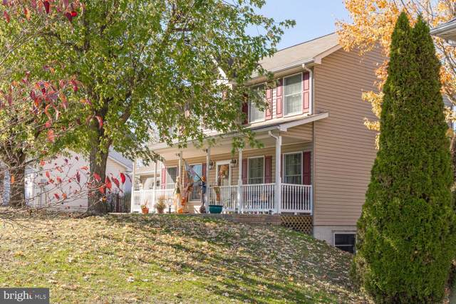 113 Senseny Glen Drive, WINCHESTER, VA 22602 (#VAFV154086) :: The Licata Group/Keller Williams Realty