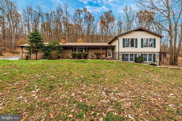 6629 Eylers Valley Flint Road, SABILLASVILLE, MD 21780 (#MDFR256064) :: The Gus Anthony Team