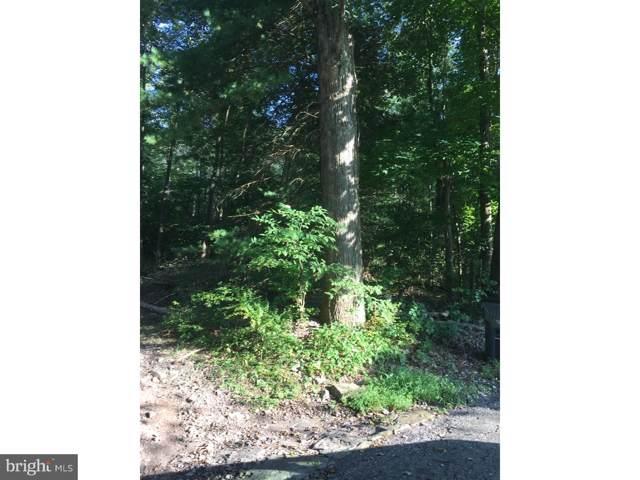 0 Mountain Road, GORDON, PA 17936 (#PASK128600) :: The Joy Daniels Real Estate Group