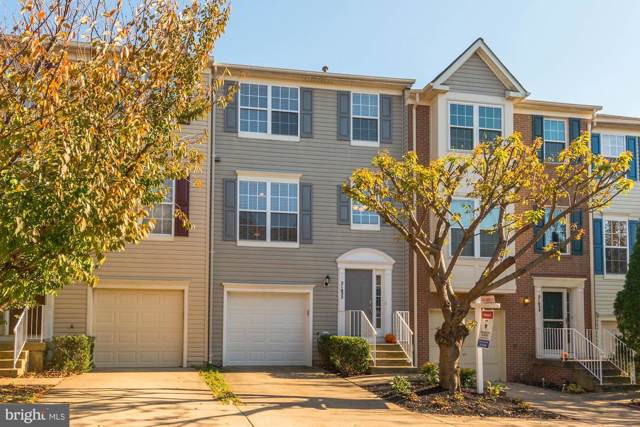 21052 Tyler Too Terrace, ASHBURN, VA 20147 (#VALO398280) :: The Greg Wells Team