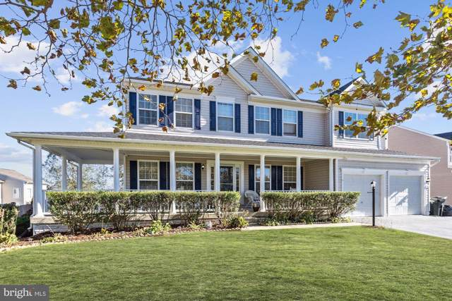 704 Wooden Bridge Drive, PURCELLVILLE, VA 20132 (#VALO398304) :: EXP Realty