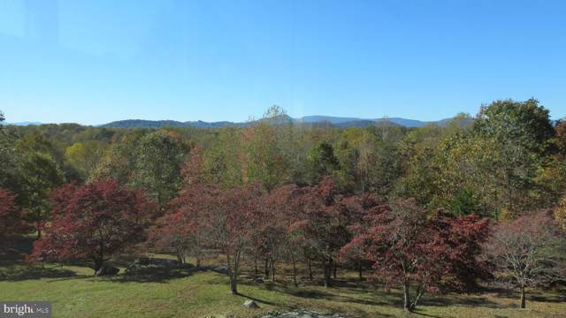 80 Four Springs Lane, AMISSVILLE, VA 20106 (#VARP107004) :: The Dailey Group