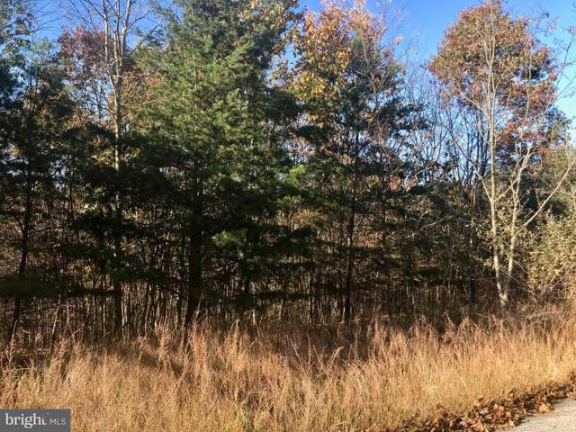 Lot 51 Tear Drop Trail, GERRARDSTOWN, WV 25420 (#WVBE172734) :: Dart Homes