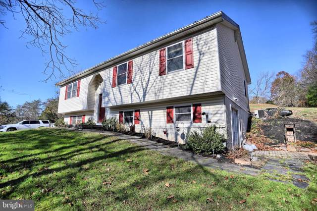 1046 Dellville Road, DUNCANNON, PA 17020 (#PAPY101566) :: Teampete Realty Services, Inc
