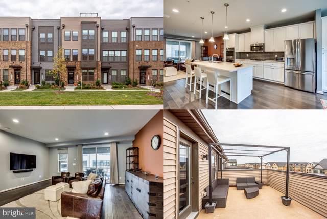22354 Lucas Terrace, ASHBURN, VA 20148 (#VALO398448) :: Dart Homes
