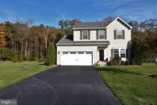 31343 Riverwood Road, MILLSBORO, DE 19966 (#DESU151336) :: The Allison Stine Team