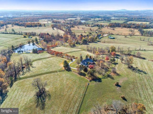 20561 Trappe Road, UPPERVILLE, VA 20184 (#VALO398486) :: The Licata Group/Keller Williams Realty
