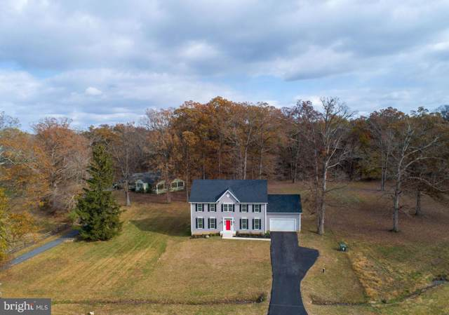 20166 Redrose Drive, STERLING, VA 20165 (#VALO398576) :: The Bob & Ronna Group