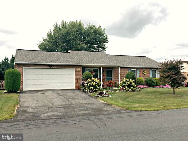 121 Horizon Drive, DENVER, PA 17517 (#PALA143330) :: The Joy Daniels Real Estate Group