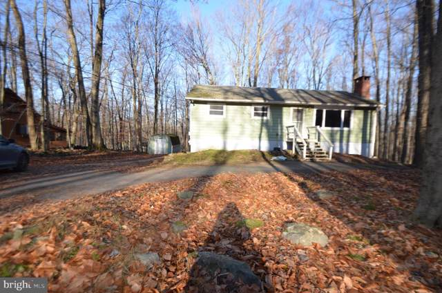 229 Mountain View D Drive, POCONO LAKE, PA 18347 (#PAMR105342) :: Talbot Greenya Group