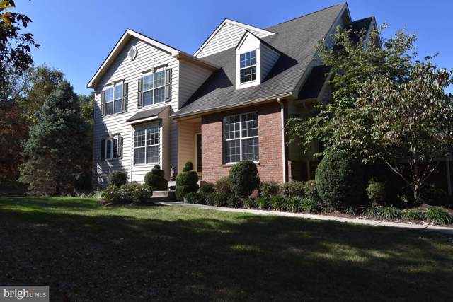 43265 Somerset Hills Terrace, ASHBURN, VA 20147 (#VALO398606) :: AJ Team Realty