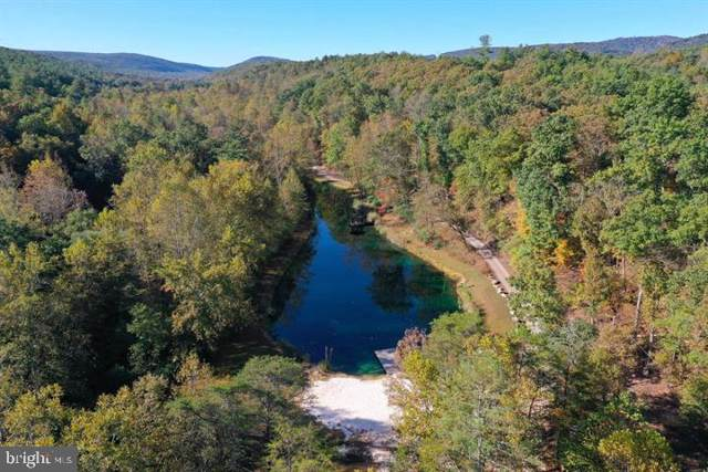 Old Mill Road, CAPON BRIDGE, WV 26711 (#WVHS113468) :: Pearson Smith Realty