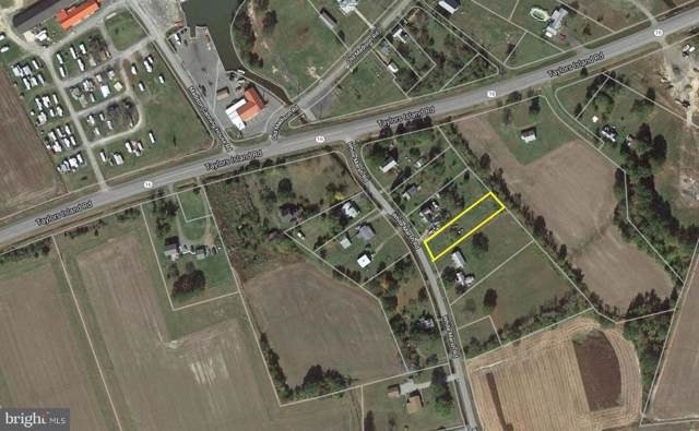 4667 White Marsh Road, MADISON, MD 21648 (#MDDO124586) :: Bob Lucido Team of Keller Williams Integrity