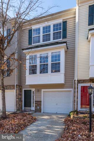 23099 Fontwell Square, STERLING, VA 20166 (#VALO398690) :: The Greg Wells Team