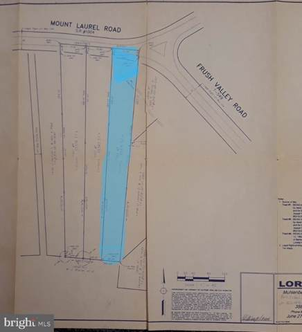 1738 Mount Laurel Road, TEMPLE, PA 19560 (#PABK350690) :: Bob Lucido Team of Keller Williams Integrity