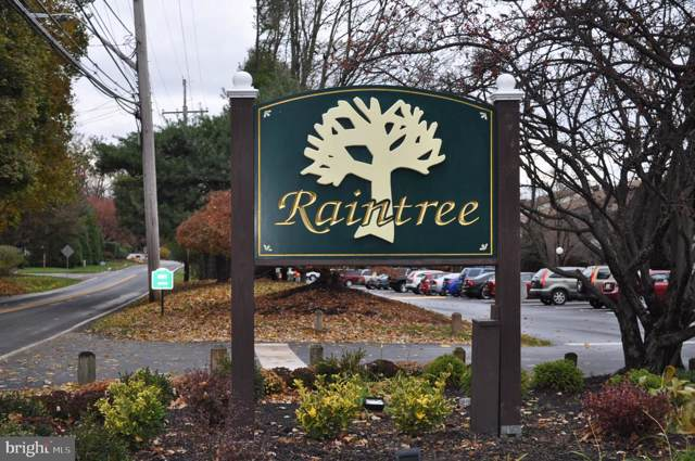 208 Raintree Lane, MALVERN, PA 19355 (#PACT493654) :: Ramus Realty Group
