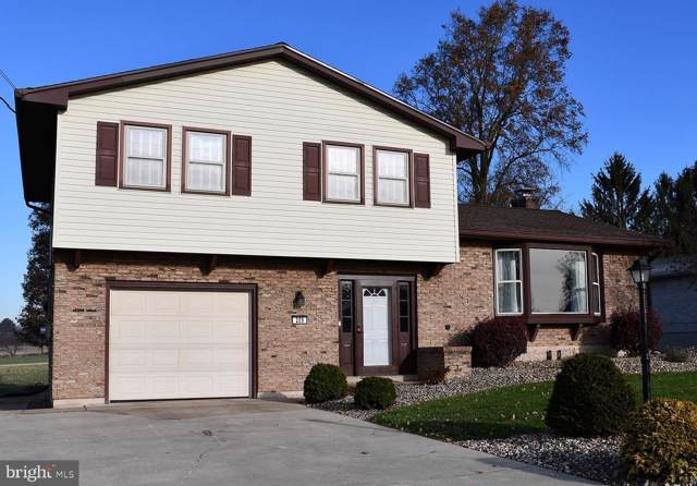 209 W Mckinley Avenue, MYERSTOWN, PA 17067 (#PALN109802) :: Liz Hamberger Real Estate Team of KW Keystone Realty